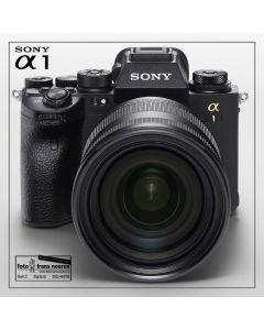 Sony A1 + SEL 24105G f4.0